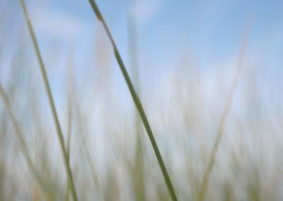 landschaft-10-400x284